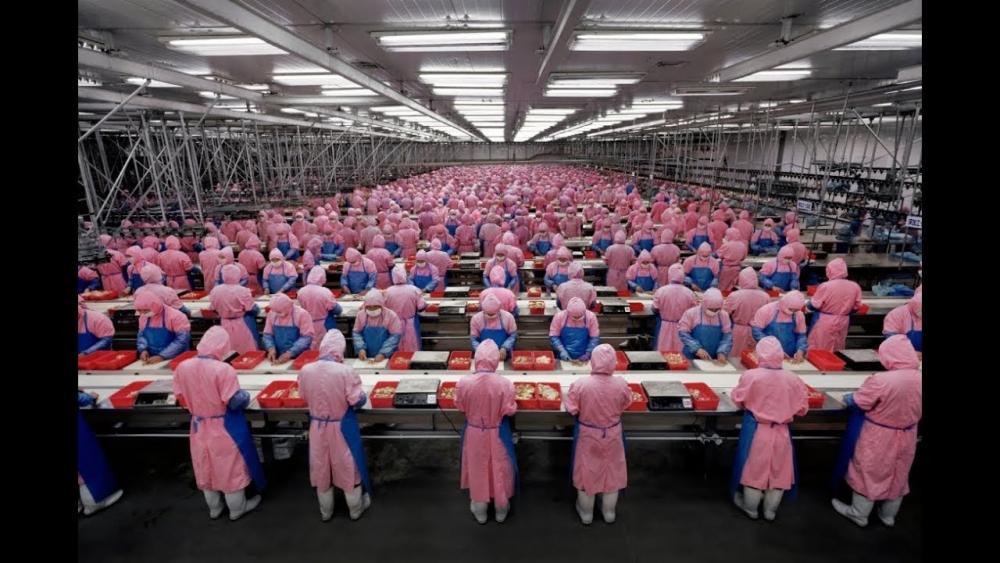 Как работают в Китае